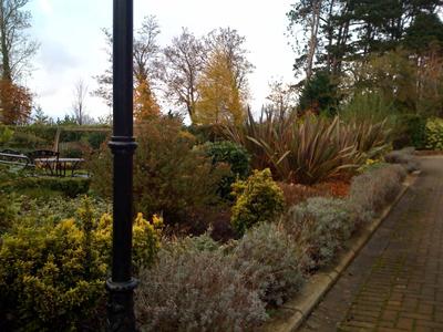 contemporary garden design kildare garden design kildare designs garden design kildare